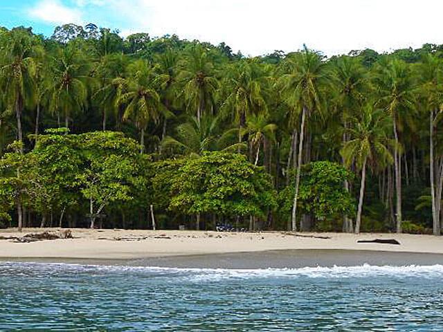 Calypso's Cruise to Tortuga Island Costa Rica
