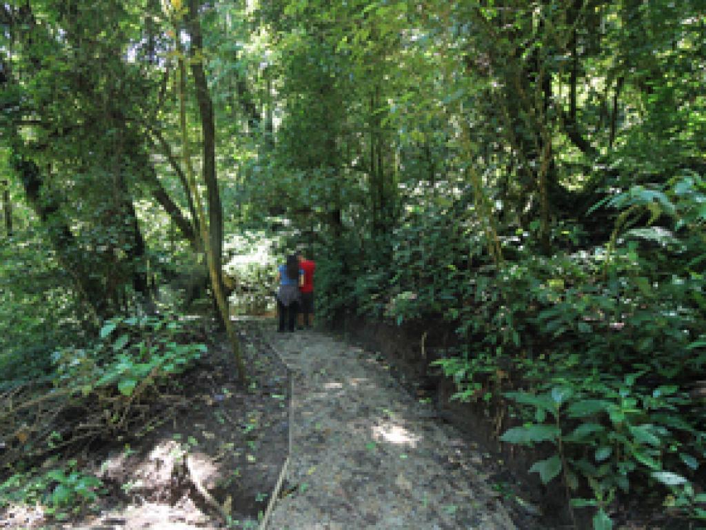 Trails Curi-Cancha Monteverde