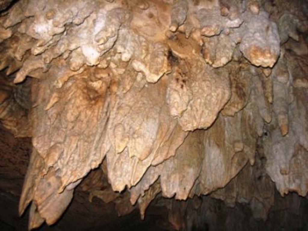 Venado Caves Arenal Costa Rica
