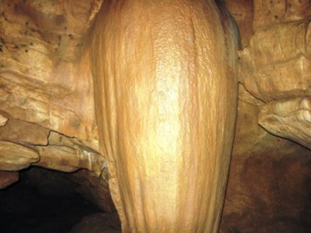 Visit Venado Caves