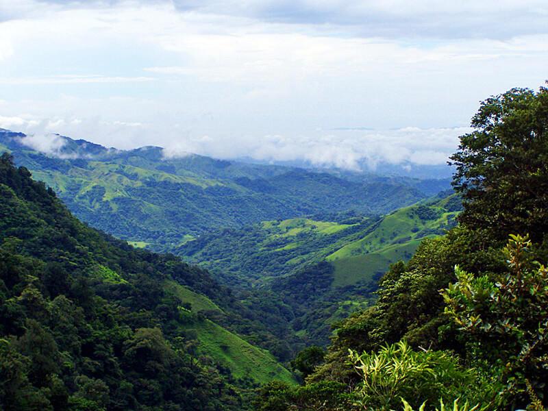 Views at back of Las Orquideas Monteverde