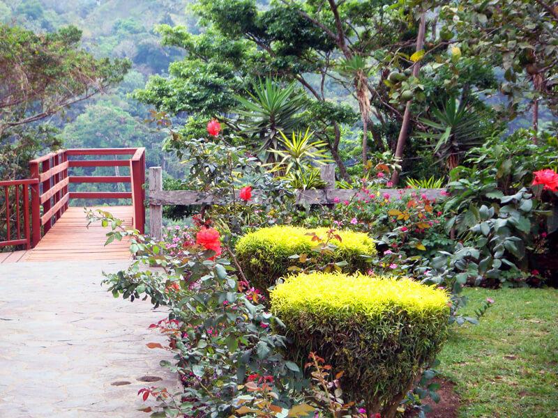 Rooms Hotel Las Orquideas Monteverde