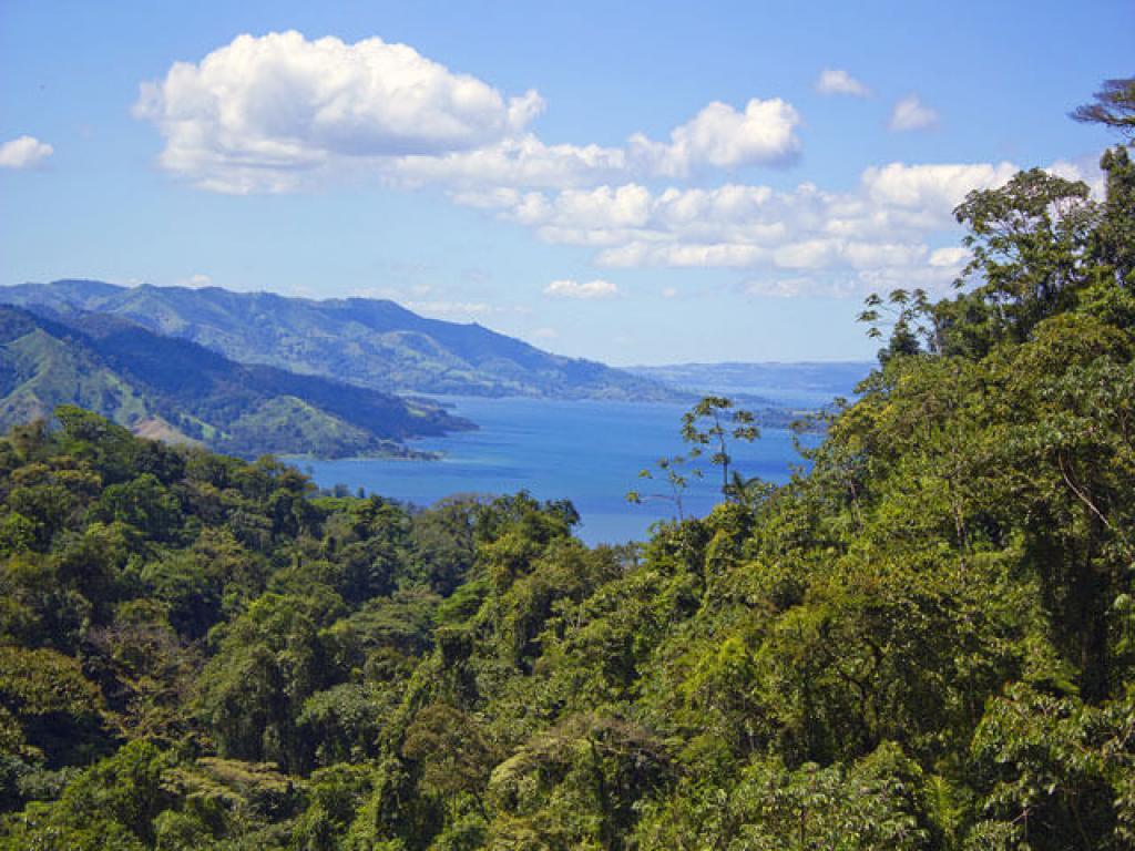 Tram Views Arenal Costa Rica