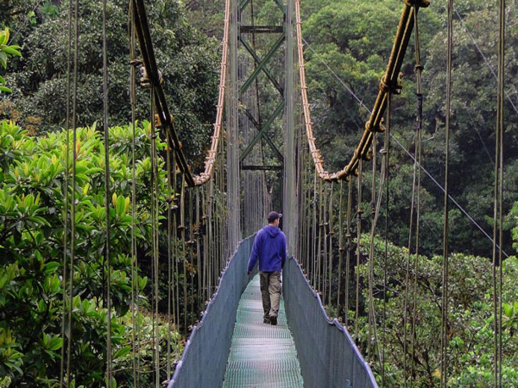 Hanging Bridges Monteverde Skytrek