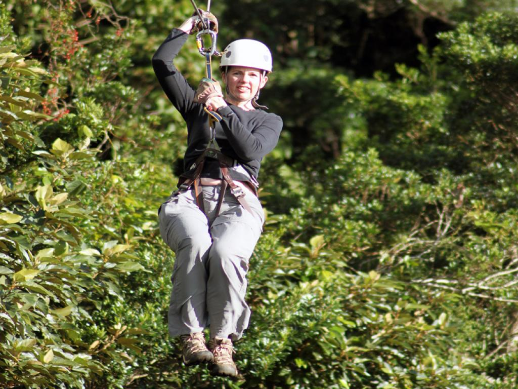 Ziplining- Original Canopy Tour
